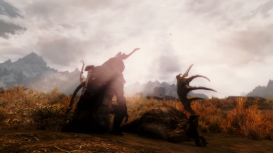 The Hunter and The Prey