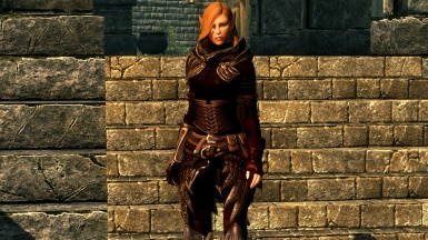 Elven Rogue Armor with Amarie 1