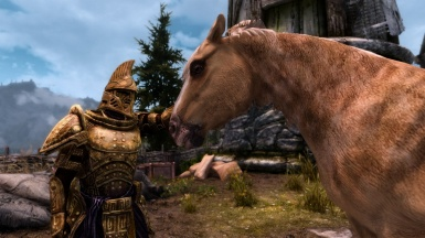 Solitude Stables Horse