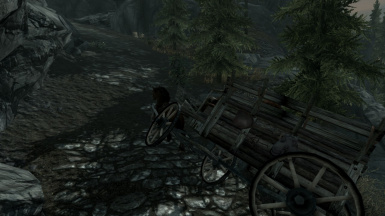 On the Way to Riften