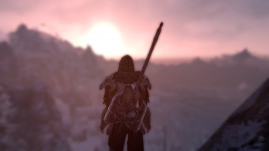 Gazing into the Sunset