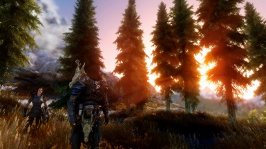 The Woods ENB WIP preview