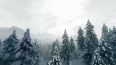 Land Of Snow And Sorrow