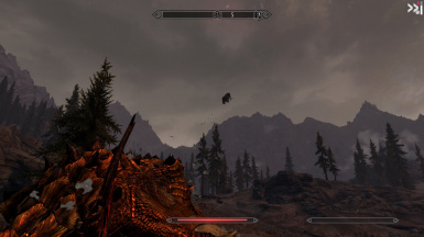 Fighting a dragon and then