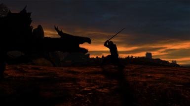 The usual Dragon fight in the sunset