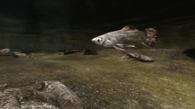 The Shark of Skyrim