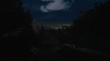 Swamp in the night