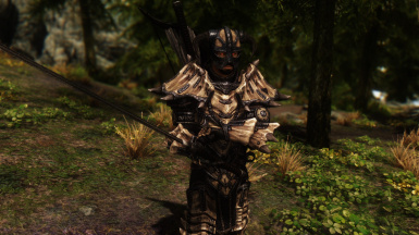 True Armor For A Dragonborn
