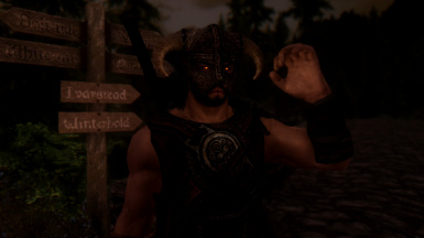 One Does Not Simply Become Dragonborn