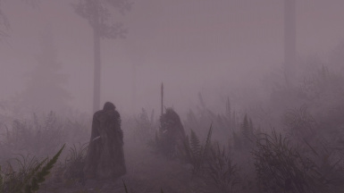 Hiding in the mist