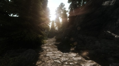 Road To Helgen