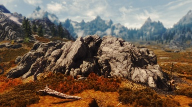 True Vision ENB dof test