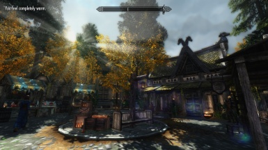 Whiterun markets