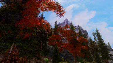 The Road to Riverwood -2-