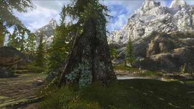 Realvision VS Realvision ENB For NLA