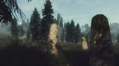 The forests of Skyrim