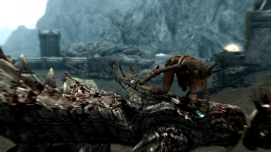 Another Dragon Combat 1