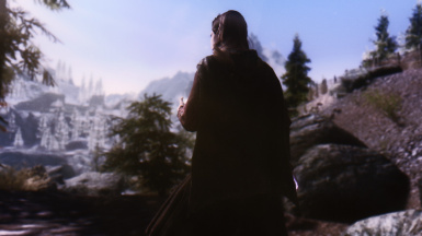 Road to Windhelm