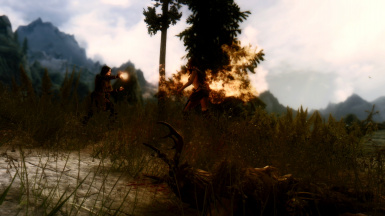 Battle with the Forsworn