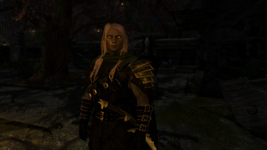 Drizzt Do'Urden my Ningheim follower