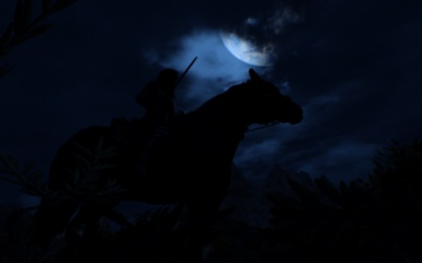 Hunting in the moonlight