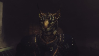 Joto-The Khajiit Follower Coming Soon