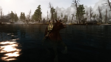 The swimming horse