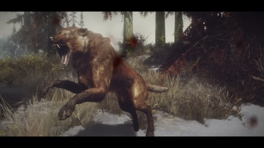 The faithful red wolf Faelor A series from the swampy lands