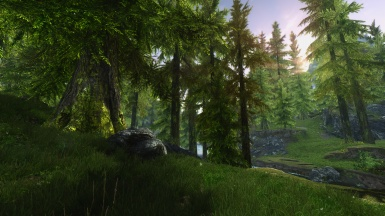 Greeny Forest