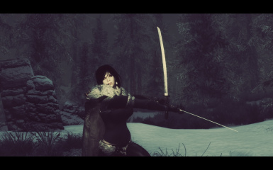 Sophia Against Vigilants Of Stendarr