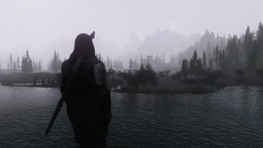 Watching the fog