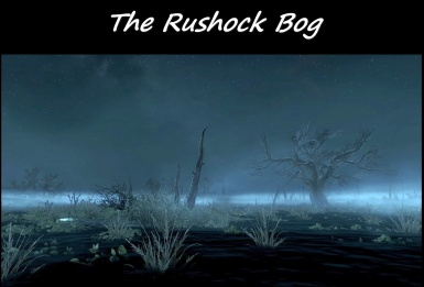 The Rushock Bog