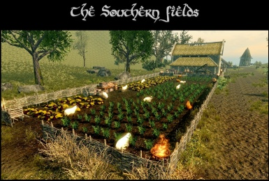 The Southern fields
