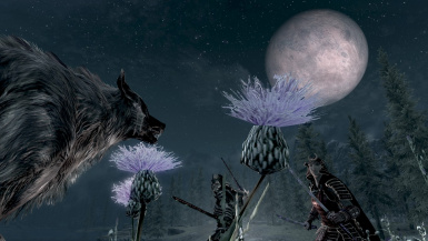 Look out that Fuc-ing Wolf is not Growling at the moon