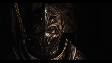 Disguise as Thalmor