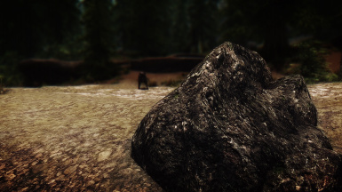 the reason for why photography is a dangerous profession in Skyrim