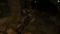 I surprised a couple of draugr