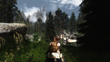 Skyrim as it should be
