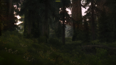 Summer time in Skyrim No-2