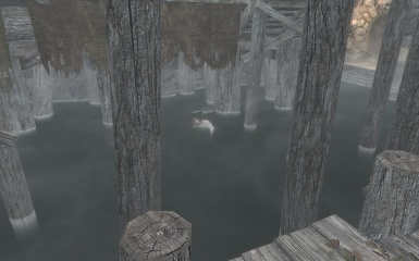 One less thief in Riften