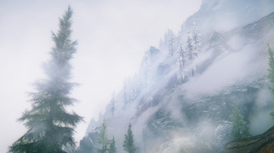 Cold Mountainside