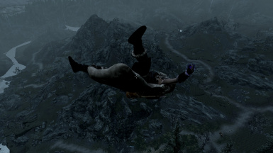 Flying lessons from a dragon