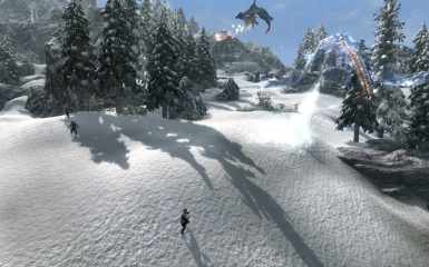 winter  dragons fight