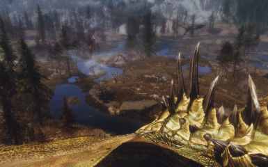 Foray in the swamp of Morthal 06