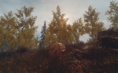 riften autumn - 01