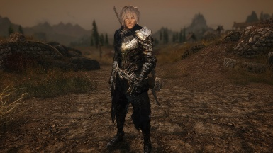 Ayin if DS Wolf Armor