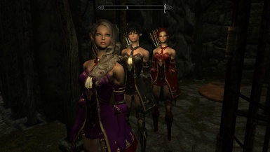 My Elven Sisters - standalone followers
