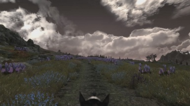 A Beatiful Horseback Ride Though Skyrim