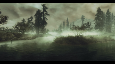 Fog On The Swamps 2