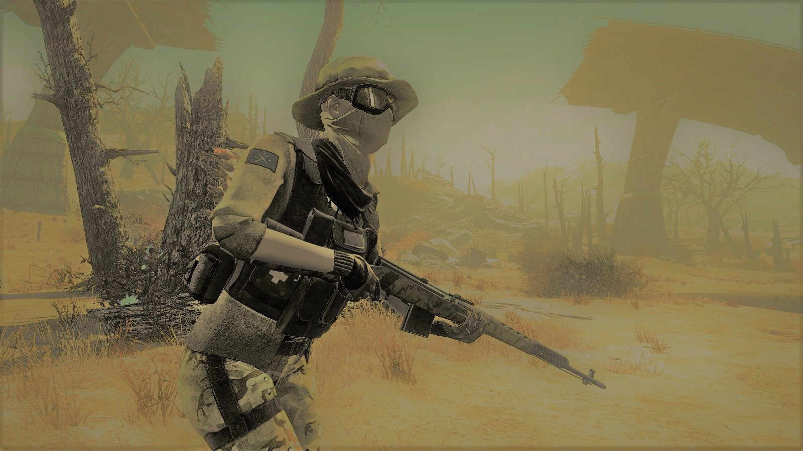 Desert Storm - A collection of Images